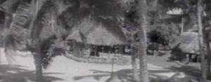 Matai Samoa